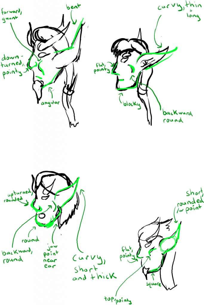 Side view of Keelath, Evelos, Mirium, and Tyrdan's faces, with green markup to show their different facial structures.