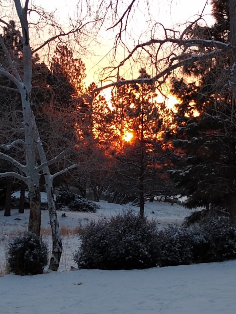 photo of a sunrise over aspens and snow in Colorado, USA